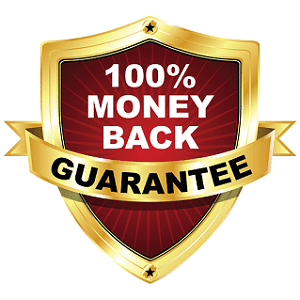 100% money back guarantee SEO